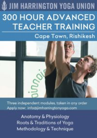 advancedyogateachertraining_flyer_medium