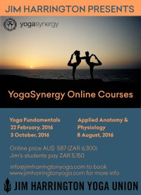 SynergyCourses_Online
