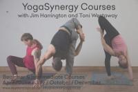 YogaSynergyCourses