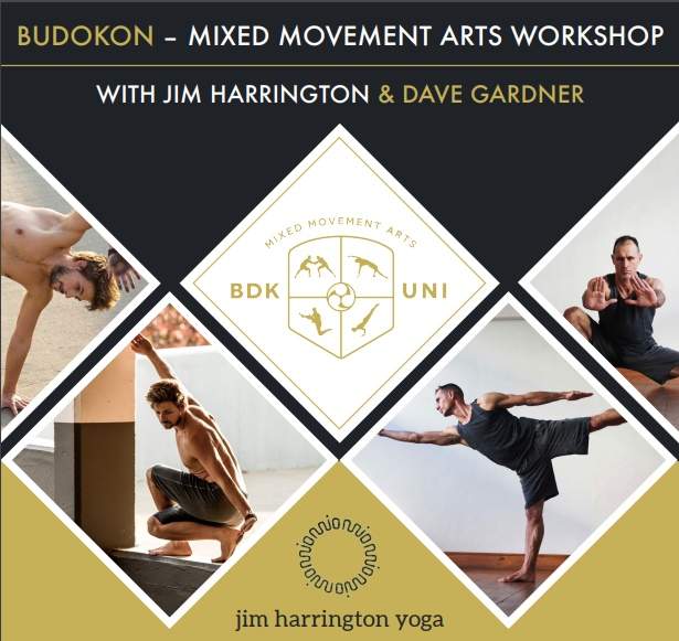BudokonWorkshop_VirginActive_JimHarrington